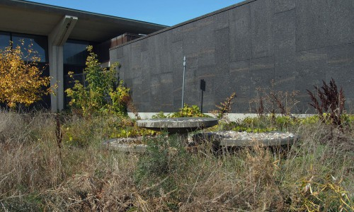 Concrete sculpture with overgrown landscaping in the entry forecourt